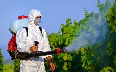 Disinfestazioni ambientali (insetti, parassiti, roditori)